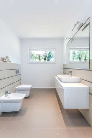 rest room: Bright space - a white rest room with a toilet, a sink and a bidet Stock Photo