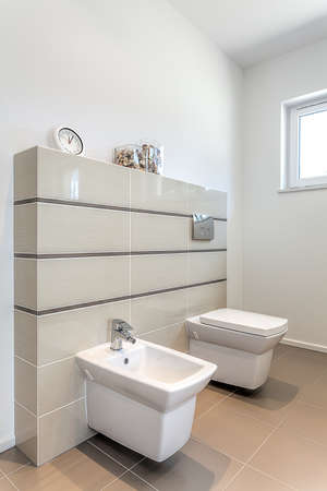 water closet: Bright space - a toilet bowl and a bidet Stock Photo