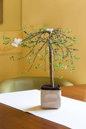 mediterranean interior: Mediterranean interior - a bonsai tree with white butterflies