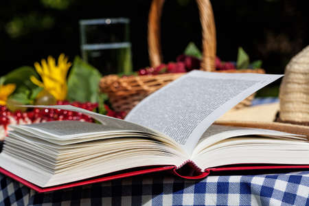 lazyness: An opened book lying on a picnic table Stock Photo