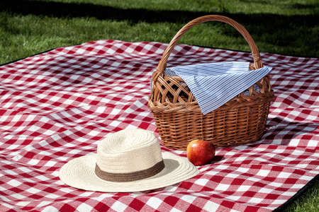 A picnic on the grass with a blanket and a wicker basket Stock Photo - 21363481