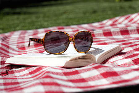 Blanket, sunglasses and book for sunbathing in garden photo