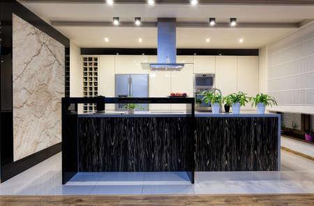 Urban apartment - Contemporary kitchen interior with elegant furniture Stock Photo - 21821998