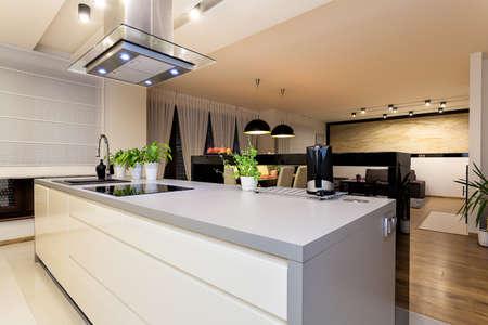 modern kitchen domestic home house: Urban apartment - White furniture in a modern kitchen