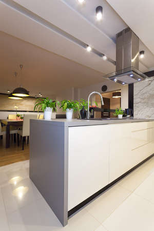 Urban apartment - vertical view of modern white kitchen photo