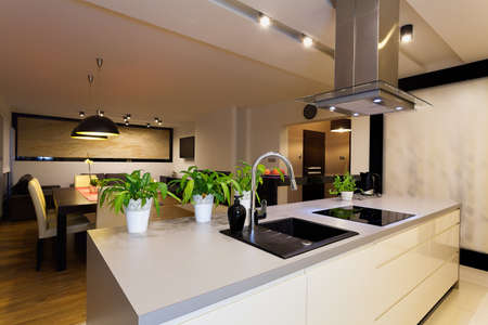 kitchen counter top: Urban apartment - white kitchen counter with plants