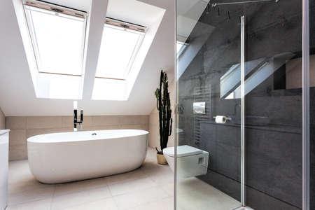 white bathroom: Urban apartment - contemporary bathroom interior, horizontally