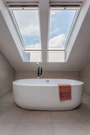 Urban apartment - vertical view of modern bath on the attic Stock Photo - 21822077