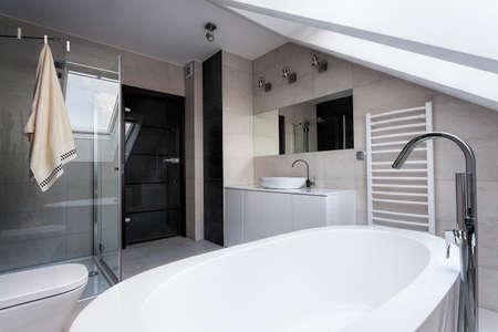 wc: Städtische Wohnung - Bad, Dusche und WC im Badezimmer Lizenzfreie Bilder