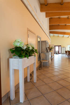 Mediterranean interior - a small flower bed in a spacious hall Stock Photo - 21822470