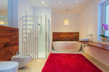Modern Bathroom With Red Cozy Carpet Royalty Free Stock Photo ...