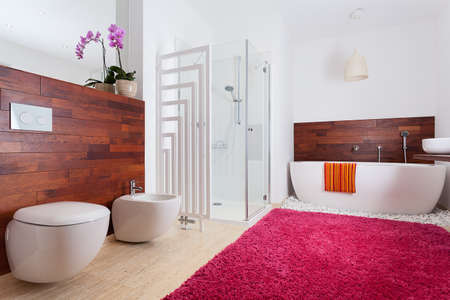 orchid house: Colorful bright modern bathroom with red carpet Stock Photo