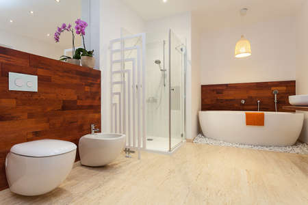 Modern spacious warm bathroom with sower and bath 免版税图像