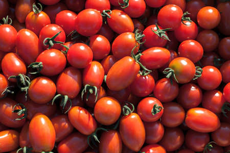 dietetical: Fresh tomato, big and red vegetables, background