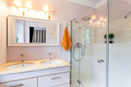 Vintage mansion - a ladies room with a shower and washbasins Stock Photo - 22161437