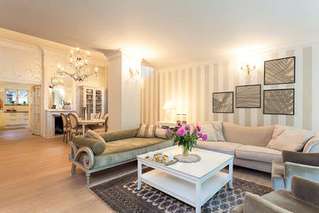 Vintage mansion - a stylish ground floor apartment in beige Stock Photo - 22192137
