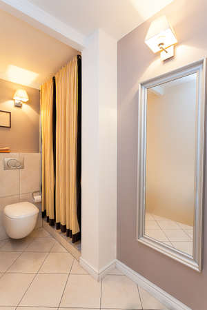 Vintage mansion - a toilet bowl and a mirror in the corner of a bathroom Stock Photo - 22183455