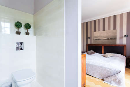Vintage mansion - an elegant bedroom with a white toilet Stock Photo - 22183465