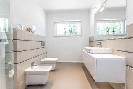 bidet: Bright space - a white bathroom with a washbasin, a bidet and a bowl Stock Photo