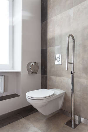 Vertical view of a toilet interior for disabled photo