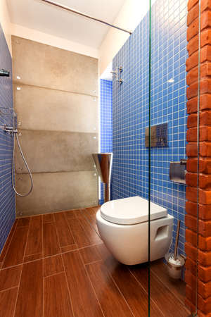 Blue and brown toilet with glass door photo