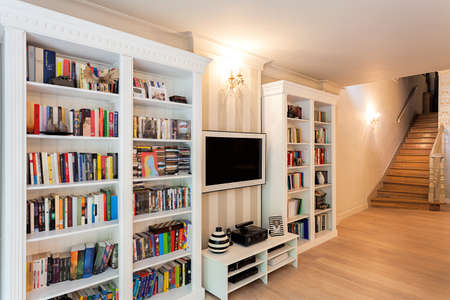 Vintage mansion - a striped wall with bookshelves Stock Photo