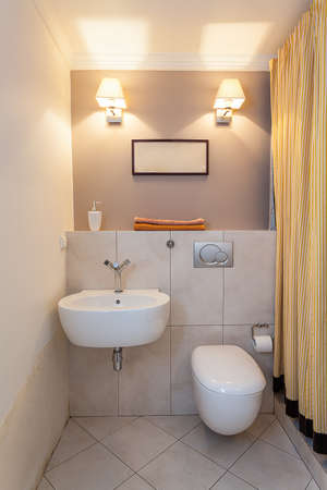 Vintage mansion - a small water closet with a sink Stock Photo - 22343724