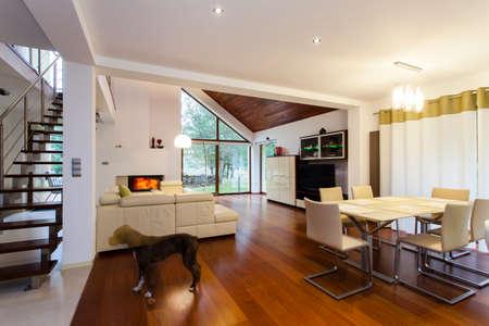 A l'intérieur de la maison élégant avec un grenier Banque d'images - 22418241