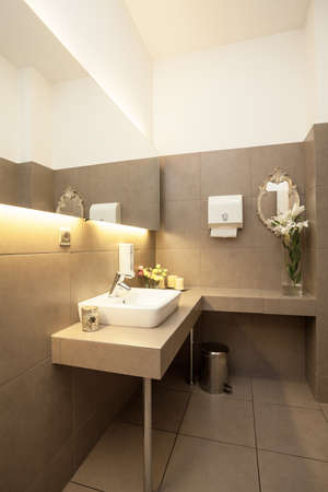 vessel sink: Interior higi�nico gris de lujo, fregadero del recipiente blanco