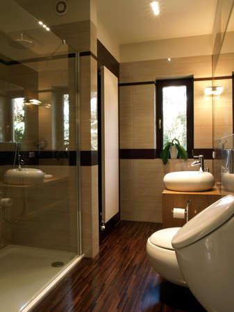 en suite: Interior of a luxury bathroom: glass shower