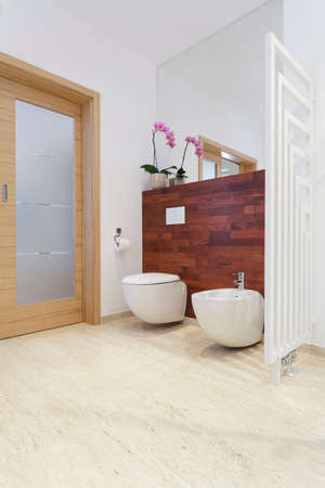 Toilet room in house with exotic wood Stock Photo - 22795038