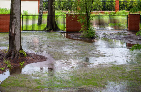 A muddy backyard with puddles after spring rain