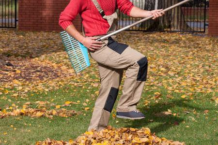 playing guitar: Gardener pretending that his playing guitar during raking leaves