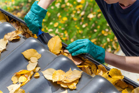 Man cleaning the gutter from autumn leaves photo