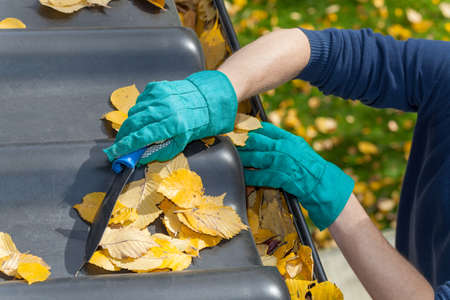 gutter: Man standing on the ladder and cleaning the roof from autumn leaves