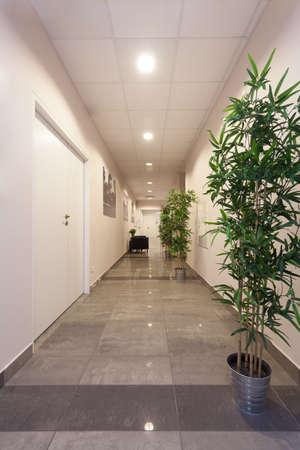 Long corridor in a modern office, vertical Stock Photo - 23537499