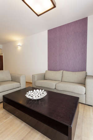Cosy flat - living room interior, grey couch Stock Photo - 23699322
