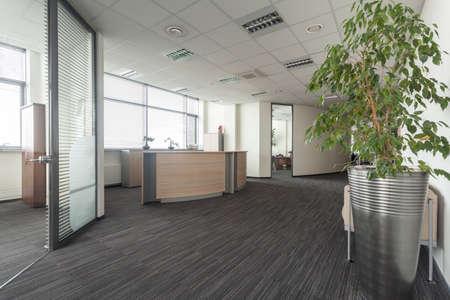 現代的なオフィス、ホール、レセプションのインテリア 写真素材