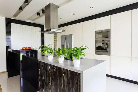 cuisine de luxe: Appartement urbain - Mobilier moderne � l'int�rieur de la cuisine lumineuse