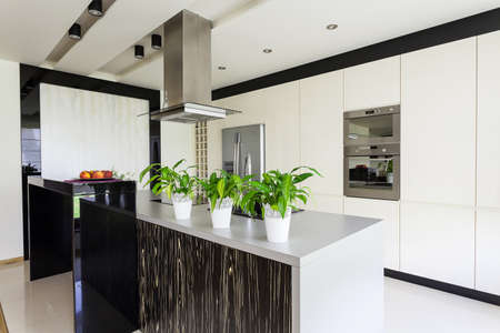 black appliances: Urban apartment - Modern furniture in bright kitchen interior