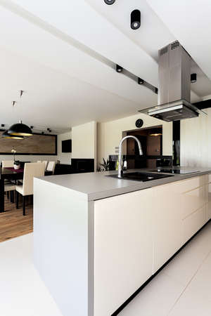 Urban apartment - white kitchen furniture, close up photo