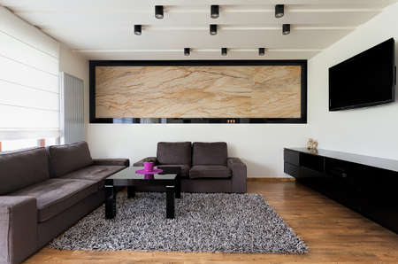 travertine house: Urban apartment - Spacious living room with grey sofa Stock Photo