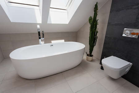 Urban apartment - modern luxury oval bath in bathroom Stock Photo - 23725456