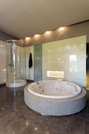 Jacuzzi and shower in spacious bathroom photo