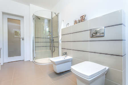 Bright space - a modern toilet with a shower and a bidet Stock Photo - 24026103