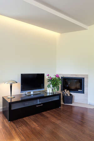 Bright space - a modern tv set and a fireplace photo
