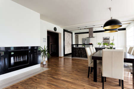 Urban apartment - contemporary interior in black and white photo