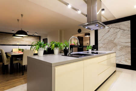 Urban apartment - kitchen interior with travertine wall photo