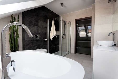 bowl sink: Urban apartment - interior of a luxury bathroom