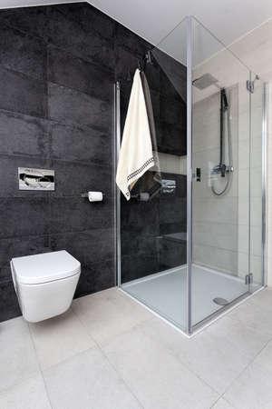 Urban apartment - glass shower and white toilet Stock Photo - 24398800